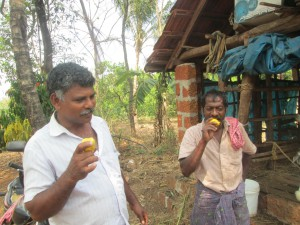 Siddique and Sasi, Francis' neighbours